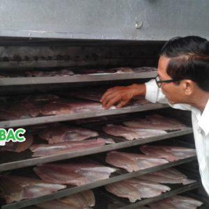 Báo giá máy sấy thực phẩm công nghiệp nhiệt thấp