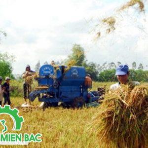 Tư vấn giá máy sấy lúa bằng điện