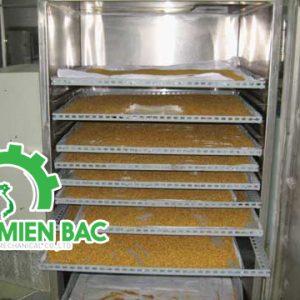 Tìm hiểu máy sấy nông sản mini