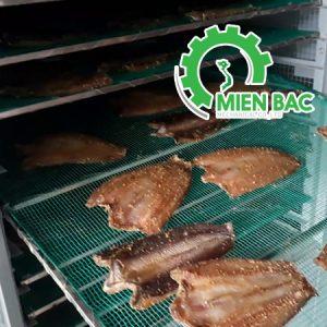 Tìm hiểu báo giá tủ (máy sấy) sấy thịt bò khô